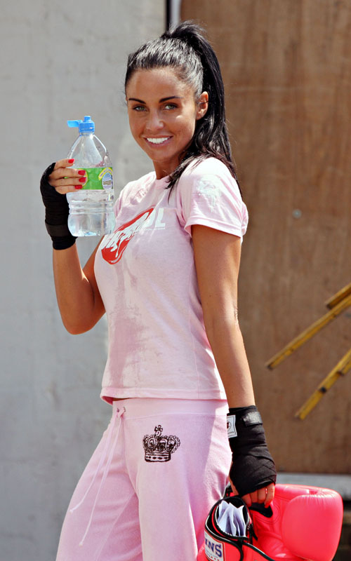 Katie Price Is A Knockout.  Photo: Flynetonline.com