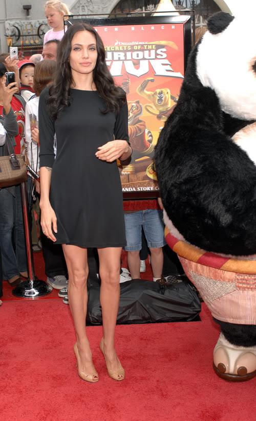 Angelina Promoting DVD Release Of Kung Fu Panda In L.A.  Photo: Splashnewsonline.com