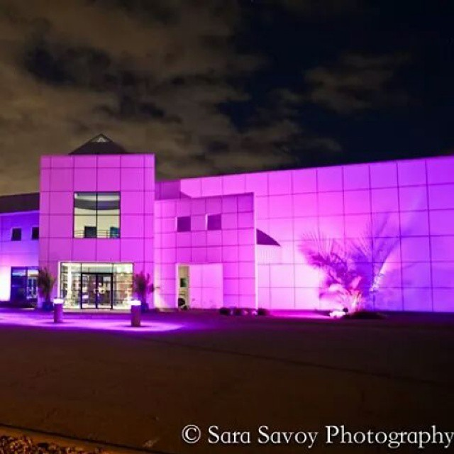 PAISLEY PARK THIS WEEKEND...